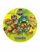 disque azyme tortues ninja